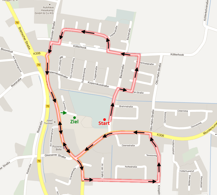 Route Umzug 2012